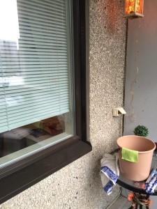 Ensimmäisten aurinkoisten päivien aikana näkee, miten ikkunat tarvitsevat pesua talven jäljiltä. Puhtaasta ikkunasta voi nähdä jopa läpi!
