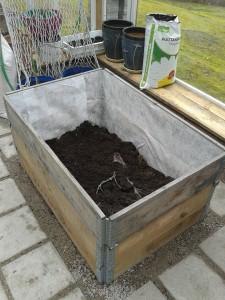 Hiukan vielä multaa lisää niin täällä ollaan valmiita vesimeloneille!